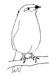 mynah bird coloring page free printable coloring pages