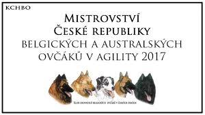 belgian sheepdog agility belgian shepherd czech agility championship 2017 ykuk deabei