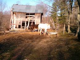 West Virginia travel log images 270 best west virginia home sweet home images jpg