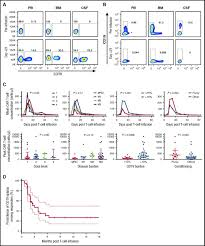 intent to treat leukemia remission by cd19 car t cells of defined