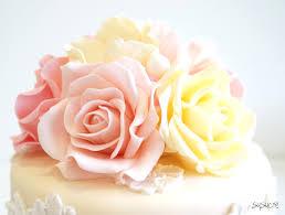Rose Cake Susucre