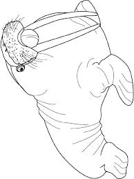 dessin à colorier dun morse