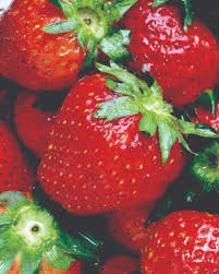 fruits and berries the basics of growing at home grow northwest