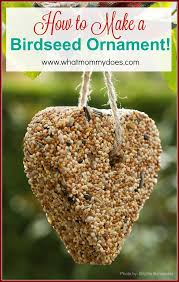 how to make a bird seed ornament bird seed ornaments gelatin and