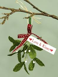 Mistletoe Decoration 113 Best Christmas Kisses Images On Pinterest Christmas Kiss