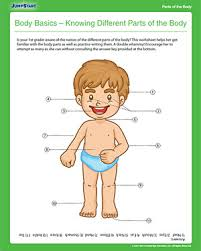 body basics knowing different parts of the body free 1st grade