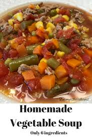 homemade vegetable soup intelligent domestications