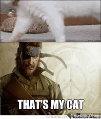 that s my cat meme cat planet cat planet