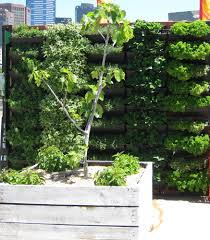 Wall Gardens Sydney by Green Walls Balcony In Bloom