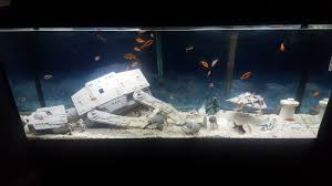 Star Wars Office Decor My Star Wars Fish Tank Album On Imgur