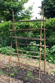 bamboo land nursery and parklands 1373 best garden structures images on pinterest gardens