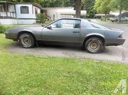 1986 camaro berlinetta for sale 86 chevrolet camaro berlinetta sport coupe for sale in stoneboro