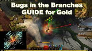 gw2 bugs in the branches guide for gold youtube