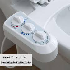 Japanese Wc Bidet Smart Toilet Bidet Flushbonading Female Hygeian Flushing Device At