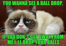 Grumpy Cat New Years Meme - grumpy cat new year memes imgflip