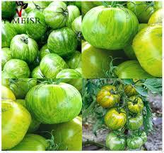 edible fruits aliexpress buy tomato seeds edible fruits vegetable seed