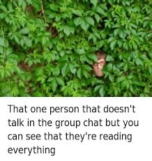 Group Chat Meme - that one person that doesn t talk in the group chat but you can