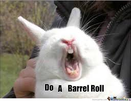 Do A Barrel Roll Meme - type do a barrel roll into google you re in for a surprise by