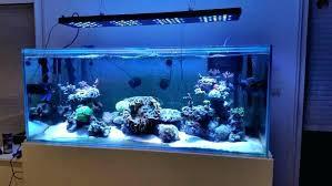 national geographic aquarium light 48 in led aquarium light 48 programmable led aquarium light crypdist