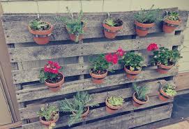 Diy Vertical Pallet Garden - 17 vertical garden ideas that will blow your mind garden lovers club