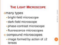 a light microscope image is formed by microscope ug
