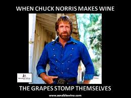 Chuck Norris Meme - chuck norris wine facts meme collection funny wine humor more at