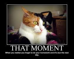 Motivational Memes - that moment motivational poster meme by generaldusk on deviantart