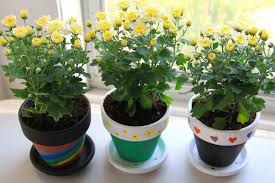 flower pot favors say thank you with diy flower pot bridal shower gifts wedding