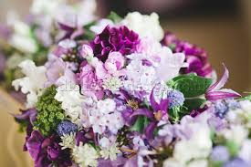 flower delivery london sweet pea season is nearly here at flowers24hours london flower
