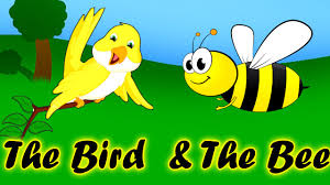the bird and the bee animated video for kids moral stories