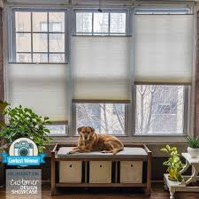 Cordless Window Shades Deluxe Cordless Top Down Bottom Up Cellular Shades Blindster Com