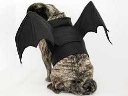 Sheep Dog Costume Halloween Bat Wings Halloween Costume Dog Bat Wings Dog