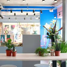 the plant room espresso bar