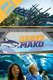 seaworld orlando thanksgiving 166 best images about orlando vacation tips on pinterest disney