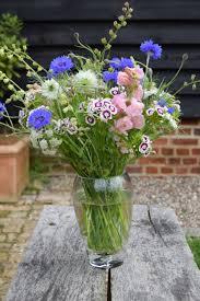 18 uk garden flowers astrantia flowers pottertons nursery