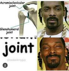Snoop Meme - the best snoop dogg memes memedroid