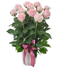 flower deals daily flower deals in melbourne vic florists truelocal