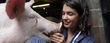 c305 animal science bsc undergraduate newcastle university
