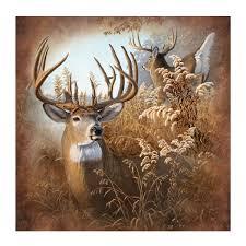 new deer 70
