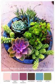 succulents meaning best 25 paper succulents ideas on pinterest diy cards 3d diy