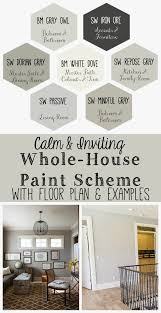 calm and inviting whole house paint scheme