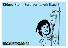 Kidney Stones Meme - 9 best no more kidney stones images on pinterest kidney stones