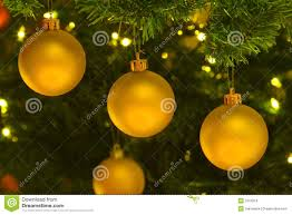 yellow ornaments in tree royalty free stock