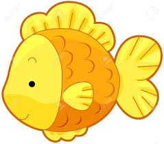 cute gold fish stock photo picture and royalty free image image
