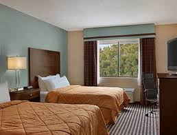 Comfort Inn Latham New York Days Inn Albany Airport Updated 2017 Prices U0026 Hotel Reviews