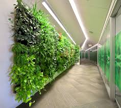 fake plants for office best design ideas u2013 browse through images