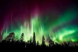 aurora borealis northern lights aurora borealis northern lights free photo on pixabay