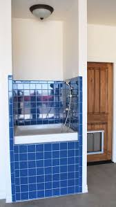 45 best dog shower enclosures images on pinterest dog shower