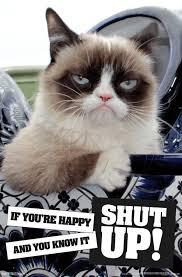 Grumpy Cat Mini Wall Calendar - cat shut up