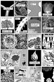 doctoral dissertation in graphic novel form boing boing